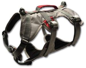 hiking harness for dogs