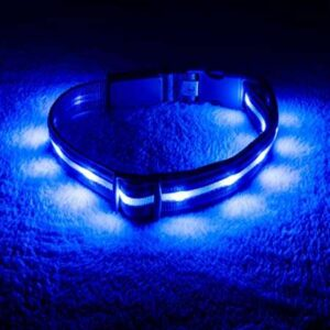 best rechargeable led dog collar for hiking